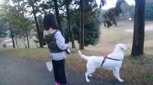 朝のいけたに公園。