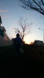 今朝はDを送った後娘っ子と夜明けとともに散歩。お休み万歳。