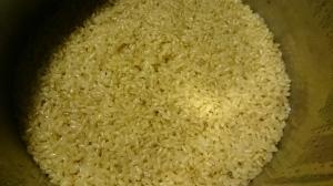 玄米もち米さっそくいただきました。