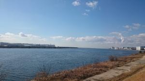 向こう岸は堺市。onshoreな風、つまり西風が吹いてた。