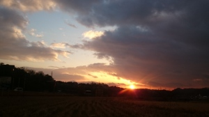 桜が丘の向こうに日が落ちる。